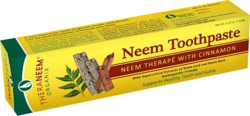 Theraneem Organix Herbal Neem ToothpasteWith Cinnamon 423 Ounce Pack of 2